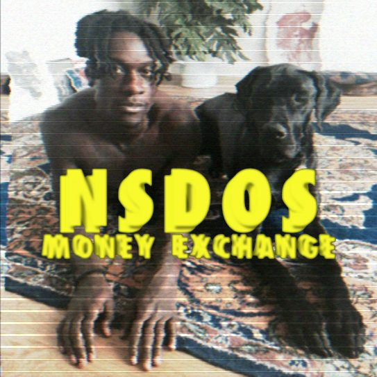 NSDOS – MONEY EXCHANGE