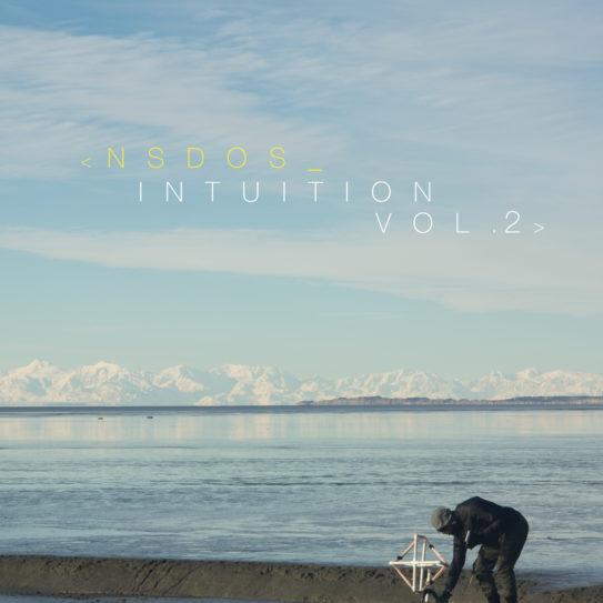 NSDOS – ALBUM INTUITION VOL. 2